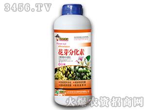 1000g含氨基酸水溶肥料-花芽分化素-农状元