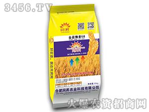 金品豫麦58-小麦种子-同昇