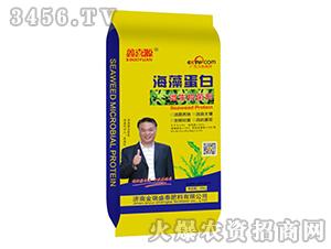 海藻蛋白微生物菌剂-鑫喜源-金瑞盛泰