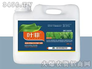 小麦专用叶面肥-叶菲-德邦农