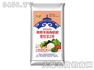 蔬菜专用草原羊粪有机肥-蒙粒丰2号-润禾生物
