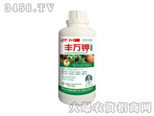 菠萝专用高效液态调节剂