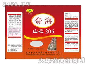 五岳泰山-登海-山农206(玉米种子)