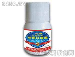 球孢白僵菌(杀虫剂)-