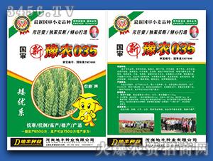 豫农035-小麦种子-