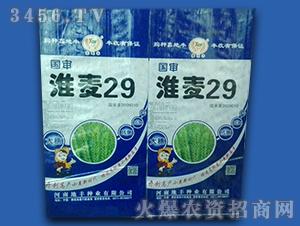 淮麦29号(袋装)-小