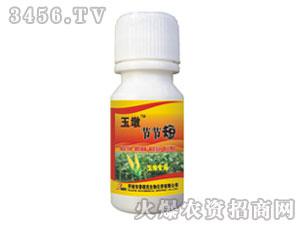 玉米专用增产剂(瓶装)