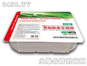 冲施型菌剂养根膨果生物钾-身土不二-土木启