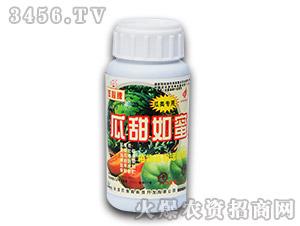 250ml瓜甜如蜜植物