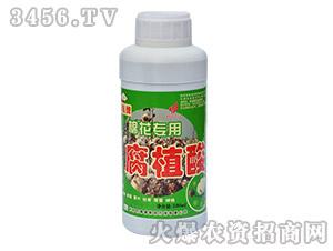 棉花专用腐殖酸-农得利