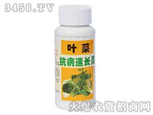 叶菜专用抗病速长灵-农