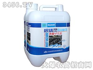 养根甲壳素(水溶肥)-矫马
