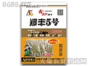 郑丰5号-小麦种子-鑫奥科种子-农科豫玉