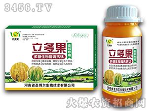 麦稻专用叶面肥-多糖生物酶诱抗肽-立多果-圣博尔
