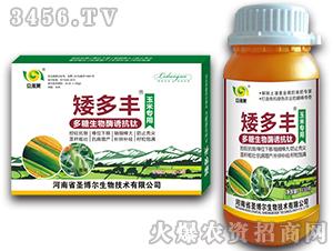 玉米专用叶面肥-矮多丰-立多果-圣博尔