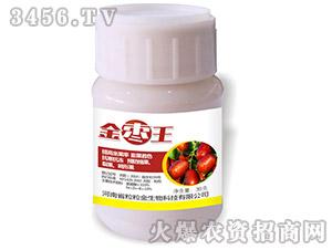 金枣王营养调理剂-粒粒金