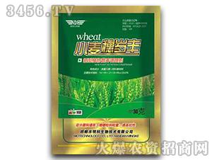 小麦营养调理剂-小麦穗岁丰-明科生物