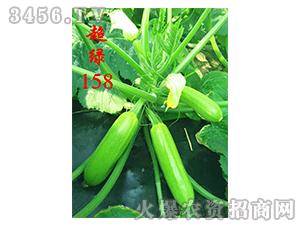 抗病毒西葫芦种子-超绿