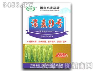 漯麦9号-小麦种子-世