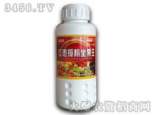 红枣授粉坐果王调节剂-漯丰王