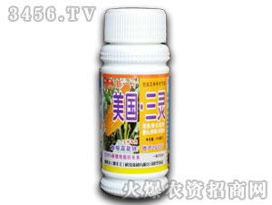 玉米专用调节剂-美国三灵-漯丰王