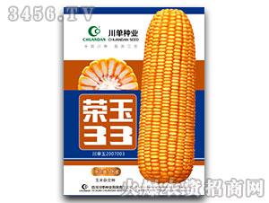 荣玉33号-玉米种子-川单种业