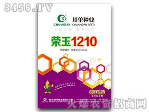 荣玉1210-玉米种子-川单种业