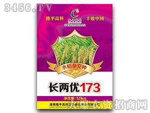 长两优173-水稻杂交种-隆平高科
