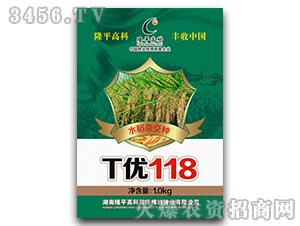 T优118-水稻杂交种-隆平高科