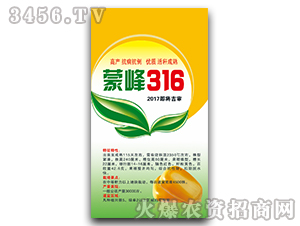 蒙峰316(2017即将吉审)-玉米种子-宝诚种业