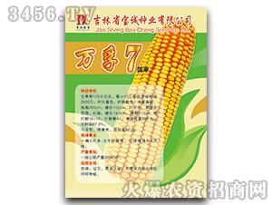 万孚7(国审)-玉米种子-宝诚种业