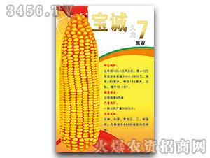 宝诚7号(黑审)-玉米种子-宝诚种业