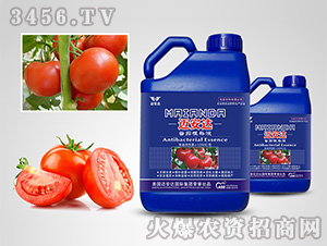 番茄专用根补液-迈安达