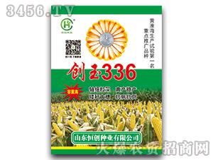 创玉336-玉米种子-恒创