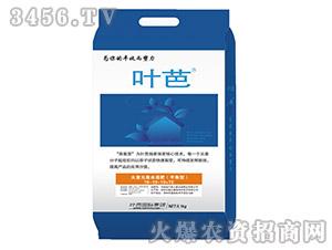 大量元素水溶肥(平衡型)19-19-19+TE-叶芭