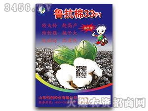 鲁抗棉33F1-棉花种子-恒创种业