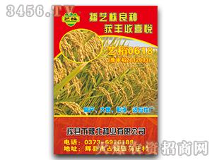 艺稻0618-水稻种子-豫北种业