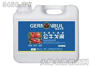 番茄专用冲施肥-公牛戈