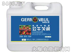 草莓专用冲施肥-公牛戈