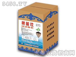 大量元素水溶肥-根苗壮(盒)-辽中京