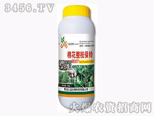 含腐植酸水溶肥料-棉花