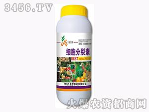 含腐植酸水溶肥料-细胞