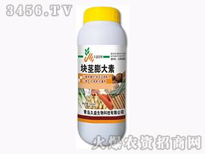 含腐植酸水溶肥料-块茎