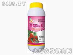 含腐植酸水溶肥料-草莓