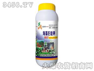 含腐植酸水溶肥料-海藻