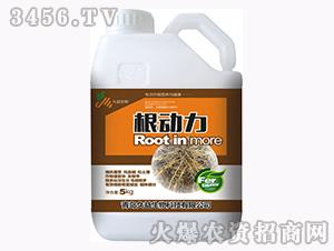含腐植酸水溶肥料-根动