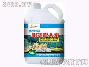含腐植酸水溶肥料-根茎