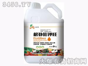 含腐植酸水溶肥料-根补