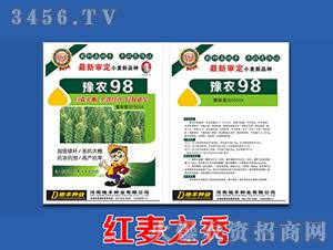 豫农98-小麦种子-地