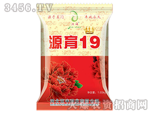 玉米种子-源育19-��丰种业